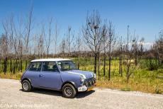 Portugal - Classic Car Road Trip Portugal: From Praia de Mira, we continued our road trip to Nazaré. In our own classic Mini, we were driving...