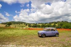 Portugal - Classic Car Road Trip Portugal: In our own Mini Authi, we drove through the Montado past a field of vibrant red poppies blooming. The...