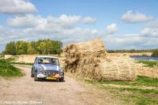 Stuyvesant Tour - Stuyvesant Mini Tour 2017: Driving through the Weerribben-Wieden in our own lavender blue coloured Mini Authi. The...